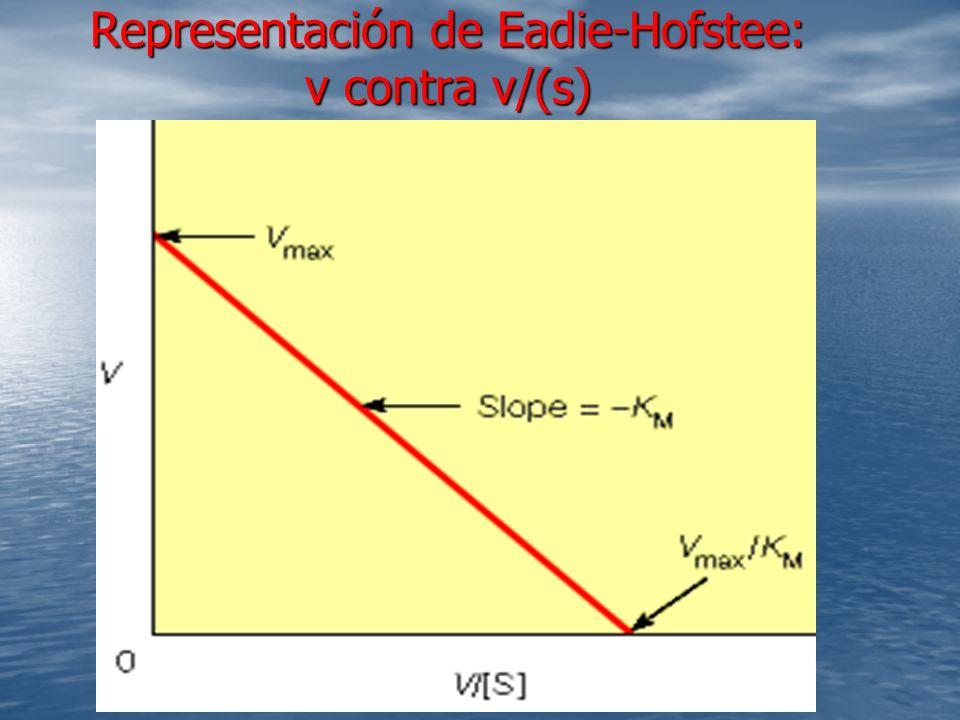 Representación de Eadie-Hofstee: v contra v/(s)