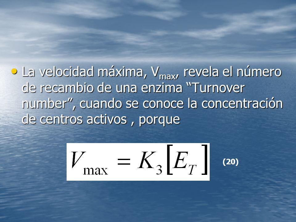 La velocidad máxima, V max, revela el número de recambio de una enzima Turnover number, cuando se conoce la concentración de centros activos, porque La velocidad máxima, V max, revela el número de recambio de una enzima Turnover number, cuando se conoce la concentración de centros activos, porque (20)