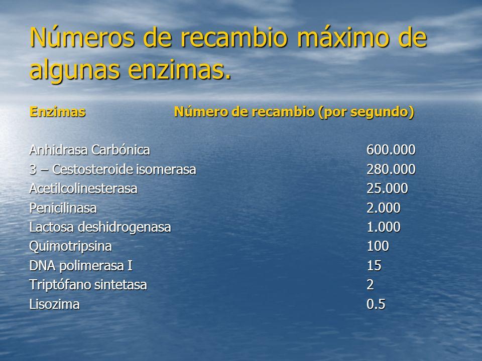 Números de recambio máximo de algunas enzimas.