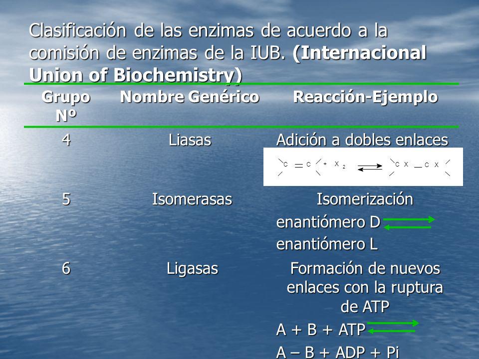 Clasificación de las enzimas de acuerdo a la comisión de enzimas de la IUB.