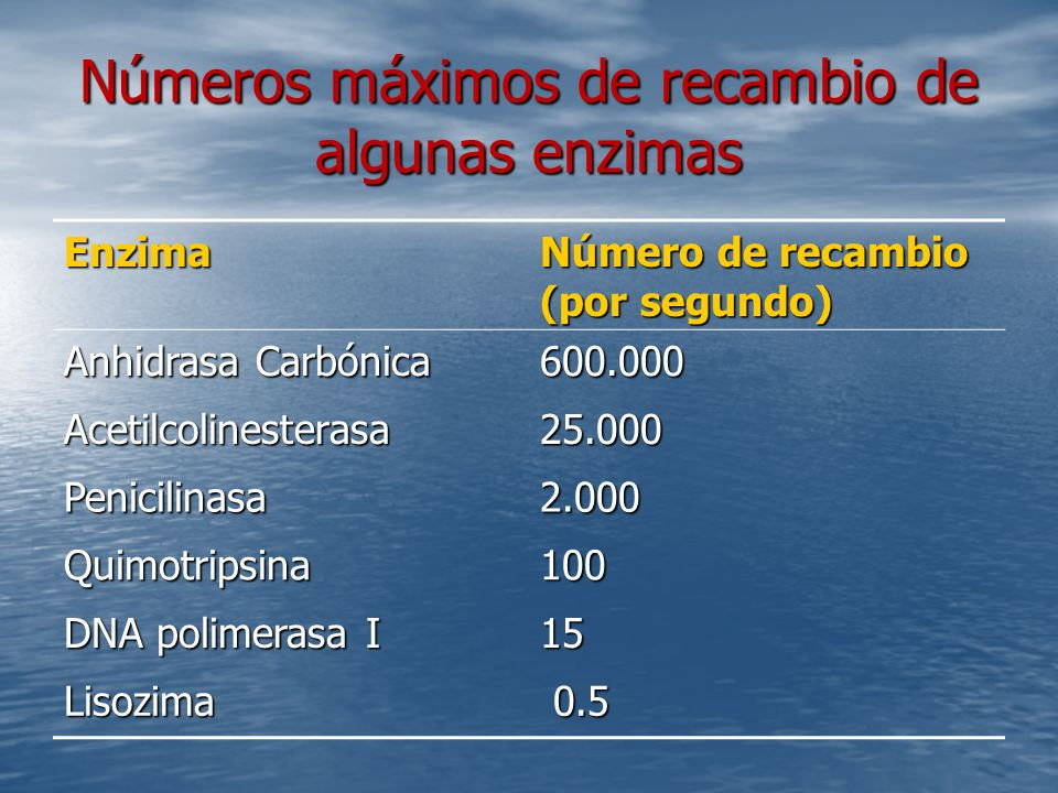 Números máximos de recambio de algunas enzimas Enzima Número de recambio (por segundo) Anhidrasa Carbónica 600.000 Acetilcolinesterasa25.000 Penicilinasa2.000 Quimotripsina100 DNA polimerasa I 15 Lisozima 0.5 0.5