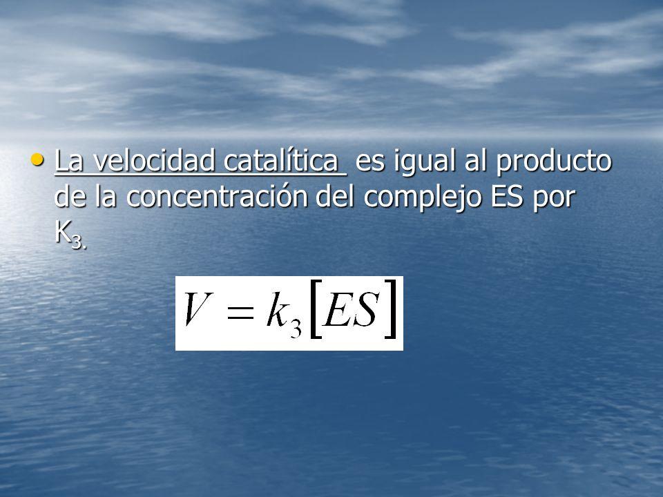 La velocidad catalítica es igual al producto de la concentración del complejo ES por K 3.