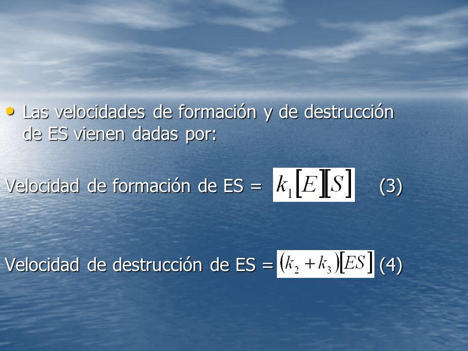 Las velocidades de formación y de destrucción de ES vienen dadas por: Las velocidades de formación y de destrucción de ES vienen dadas por: Velocidad de formación de ES = (3) Velocidad de destrucción de ES = (4)