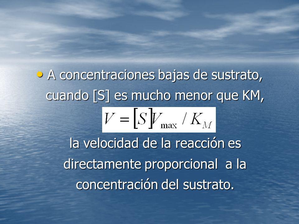 A concentraciones bajas de sustrato, cuando [S] es mucho menor que KM, A concentraciones bajas de sustrato, cuando [S] es mucho menor que KM, la velocidad de la reacción es directamente proporcional a la concentración del sustrato.