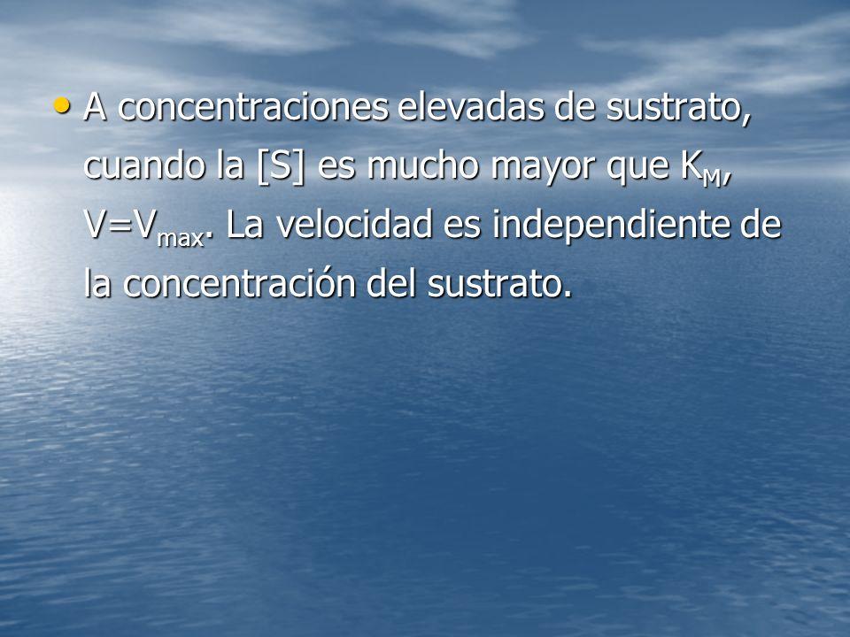 A concentraciones elevadas de sustrato, cuando la [S] es mucho mayor que K M, V=V max.
