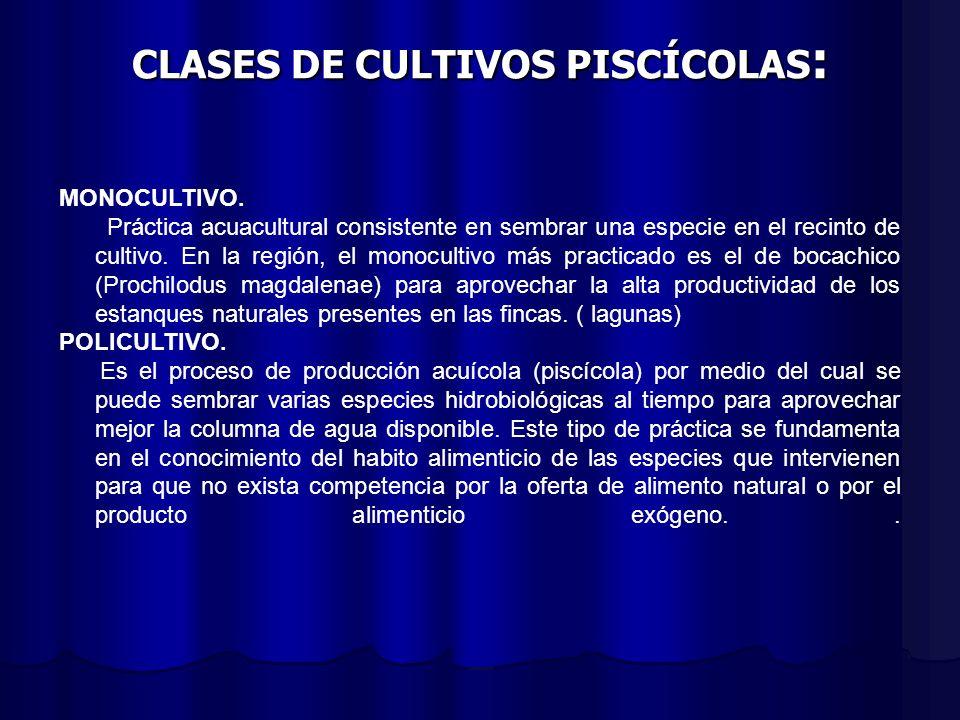 CLASES DE CULTIVOS PISCÍCOLAS : MONOCULTIVO. Práctica acuacultural consistente en sembrar una especie en el recinto de cultivo. En la región, el monoc