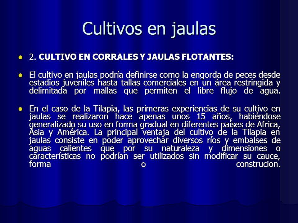 Cultivos en jaulas 2. CULTIVO EN CORRALES Y JAULAS FLOTANTES: 2. CULTIVO EN CORRALES Y JAULAS FLOTANTES: El cultivo en jaulas podría definirse como la