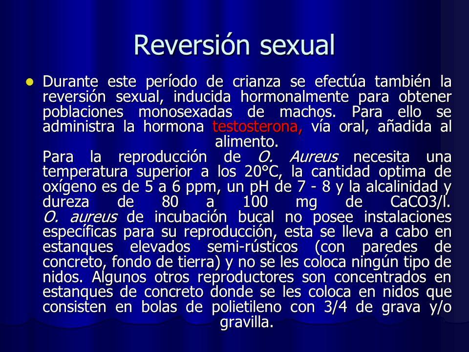 Reversión sexual Durante este período de crianza se efectúa también la reversión sexual, inducida hormonalmente para obtener poblaciones monosexadas d