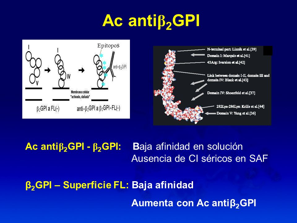 Ac anti β 2 GPI Ac anti β 2 GPI - β 2 GPI: Baja afinidad en solución Ausencia de CI séricos en SAF * * * * Epítopo s * β 2 GPI – Superficie FL: Baja a