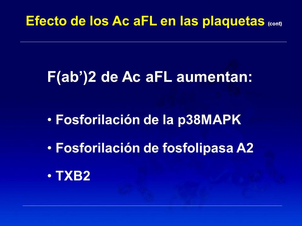 Efecto de los Ac aFL en las plaquetas (cont) F(ab)2 de Ac aFL aumentan: Fosforilación de la p38MAPK Fosforilación de fosfolipasa A2 TXB2