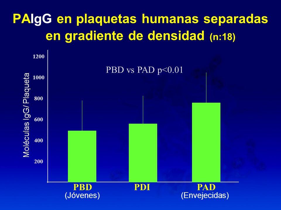 PAIgG en plaquetas humanas separadas en gradiente de densidad (n:18) PBD vs PAD p<0.01 1200 1000 800 600 400 200 PBD PDI PAD Moléculas IgG/ Plaqueta (