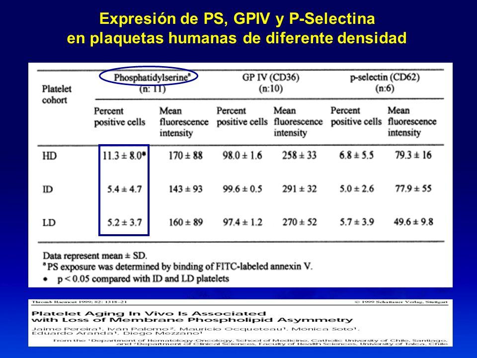 Recuento de plaquetas y exposición de PS Inyección de estradiol en perros (n:7) Recto Plaquetas Exposición de PS* *, citometría de flujo
