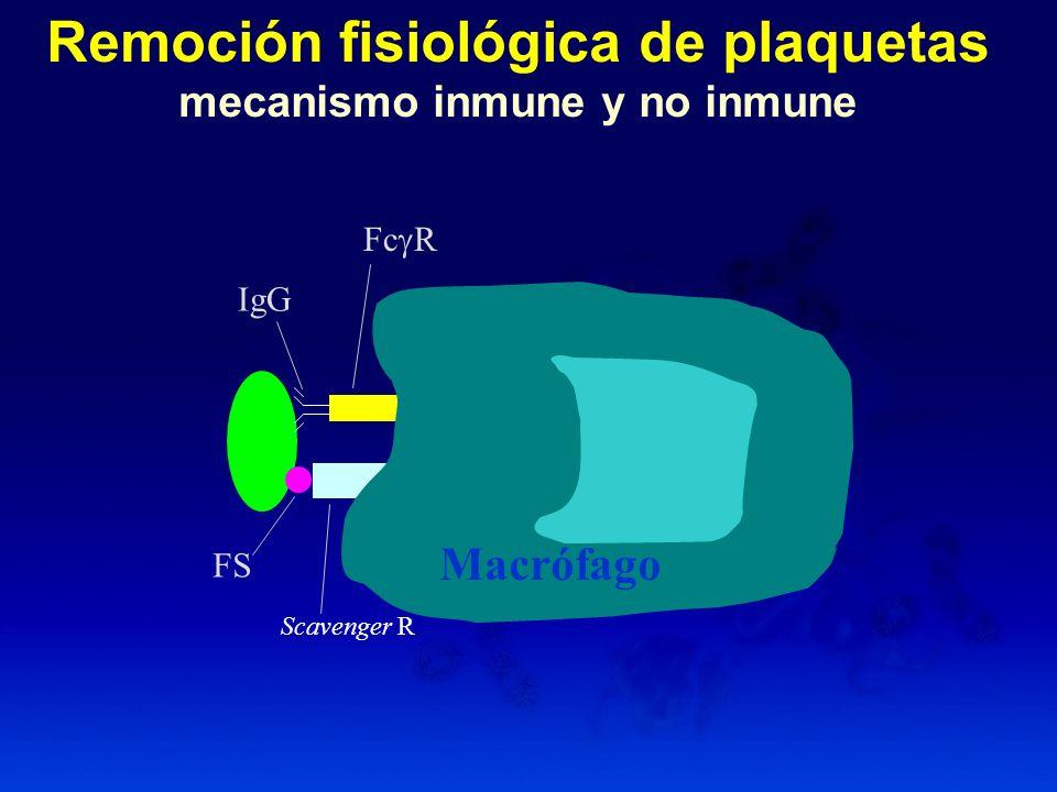 Aumento de la agregación plaquetaria (con concentraciones subagregantes de ADP, trombina o colágeno).