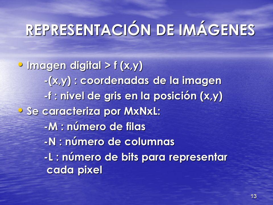 12 PROCESAMIENTO DE IMÁGENES PROCESAMIENTO DE IMÁGENES Representación de imágenes Representación de imágenes Conversión a grises Conversión a grises N