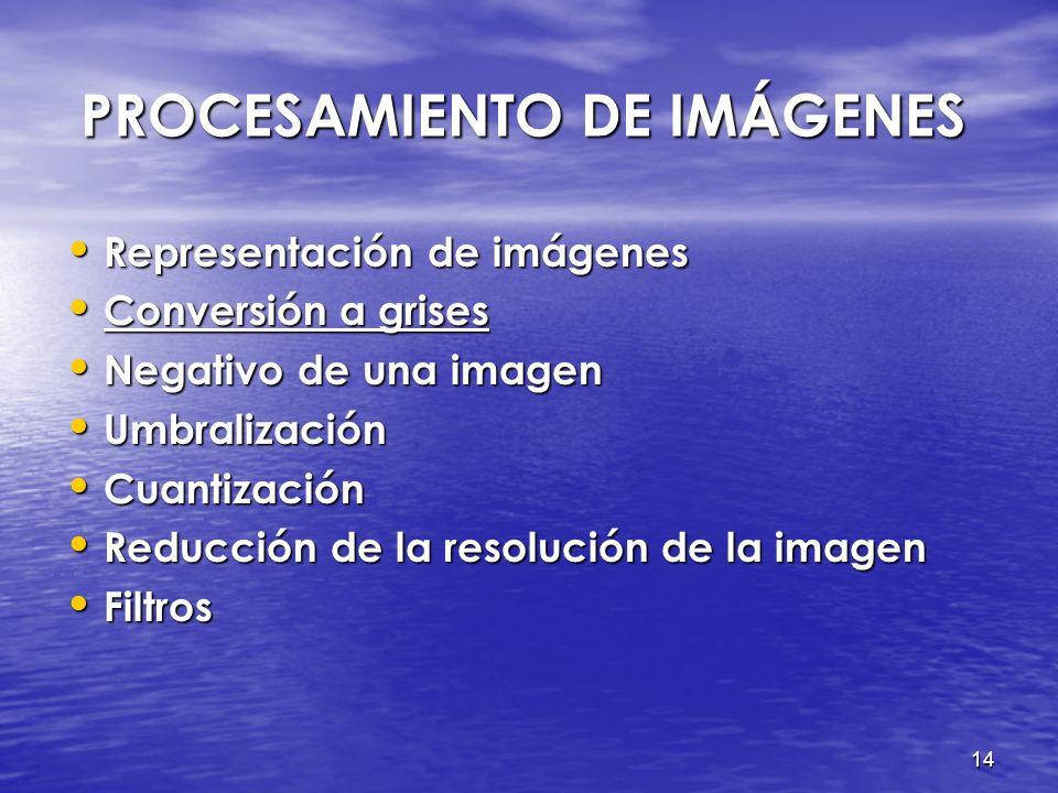 13 REPRESENTACIÓN DE IMÁGENES REPRESENTACIÓN DE IMÁGENES Imagen digital > f (x,y) Imagen digital > f (x,y) -(x,y) : coordenadas de la imagen -f : nive