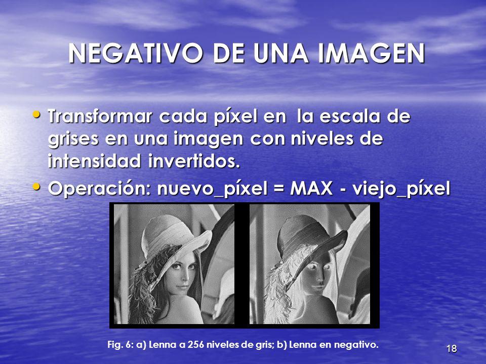 17 PROCESAMIENTO DE IMÁGENES Representación de imágenes Representación de imágenes Conversión a grises Conversión a grises Negativo de una imagen Nega