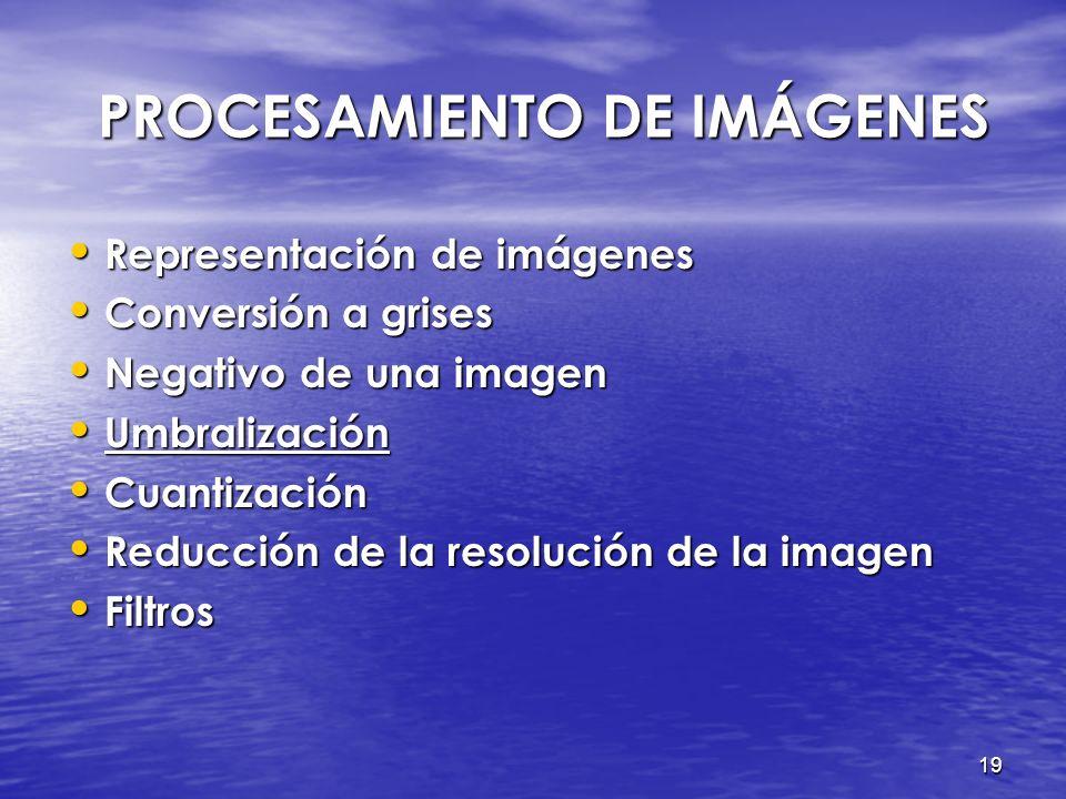 18 NEGATIVO DE UNA IMAGEN NEGATIVO DE UNA IMAGEN Transformar cada píxel en la escala de grises en una imagen con niveles de intensidad invertidos. Tra