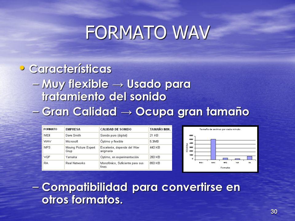 29 FORMATO WAV Introducción Introducción – Formato de archivo originario de Microsoft. – Es un estándar en audio digital para PC. – Contienen informac