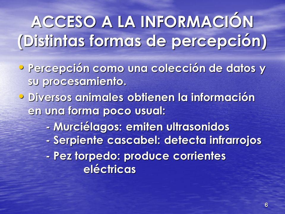 6 ACCESO A LA INFORMACIÓN (Distintas formas de percepción) ACCESO A LA INFORMACIÓN (Distintas formas de percepción) Percepción como una colección de datos y su procesamiento.