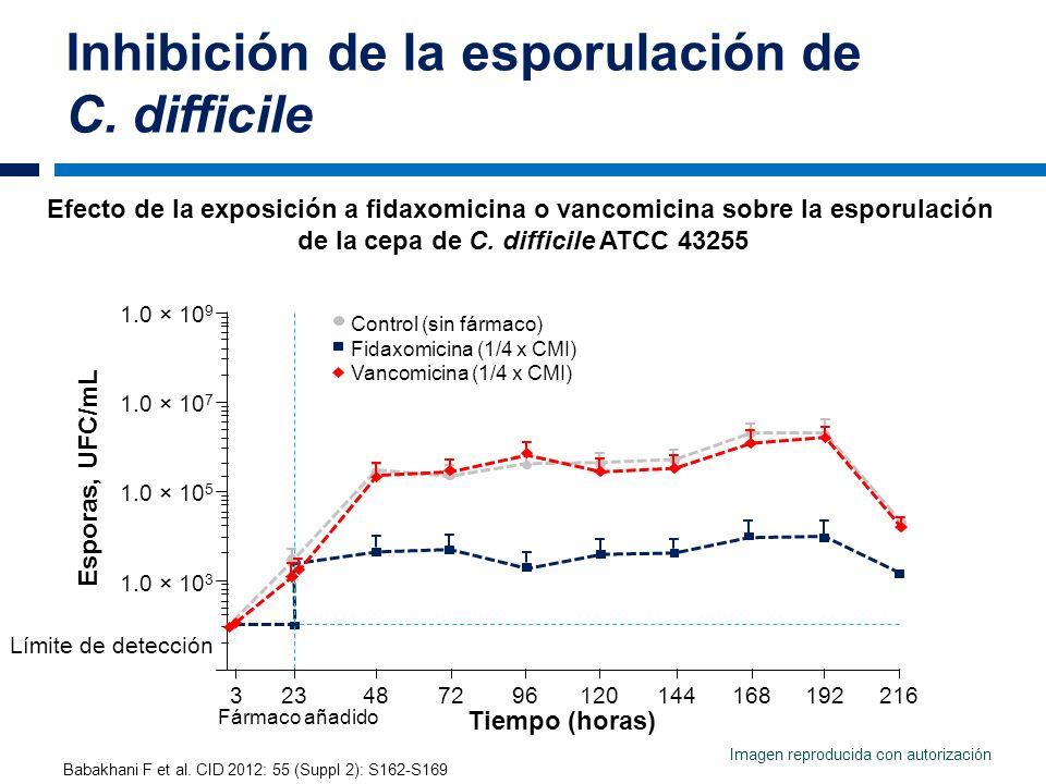Inhibición de la esporulación de C. difficile Babakhani F et al. CID 2012: 55 (Suppl 2): S162-S169 Efecto de la exposición a fidaxomicina o vancomicin