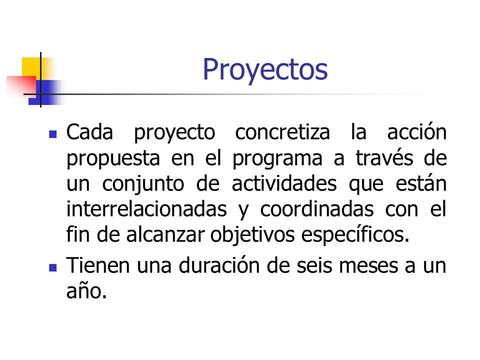 Proyectos Cada proyecto concretiza la acción propuesta en el programa a través de un conjunto de actividades que están interrelacionadas y coordinadas