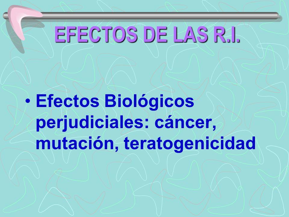 Efectos Biológicos perjudiciales: cáncer, mutación, teratogenicidad EFECTOS DE LAS R.I.