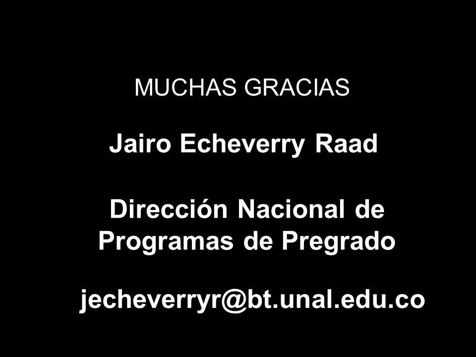 MUCHAS GRACIAS Jairo Echeverry Raad Dirección Nacional de Programas de Pregrado jecheverryr@bt.unal.edu.co