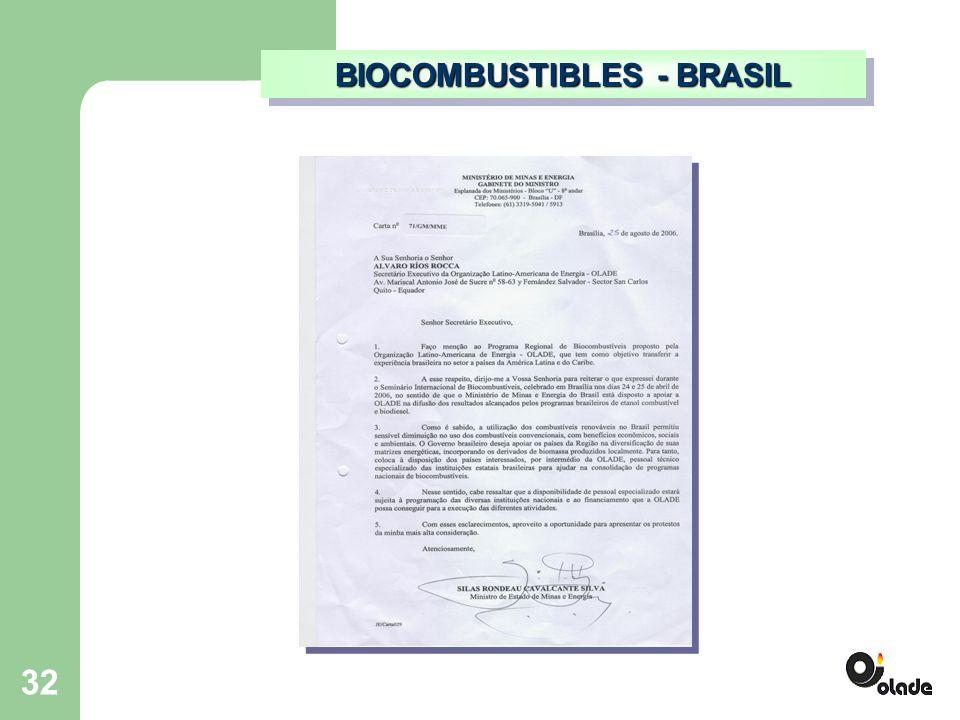 32 BIOCOMBUSTIBLES - BRASIL
