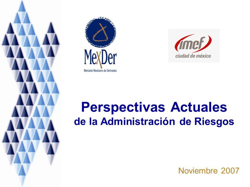 Perspectivas Actuales de la Administración de Riesgos Noviembre 2007