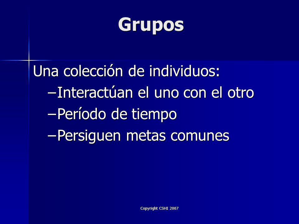 Copyright CSHI 2007 Liderazgo y Etapas en el Grupo Grupo y Liderazgo Comandante Compañero Facilitador Grupo De Extraños Grupo Que Se Une Grupo Cohesivo