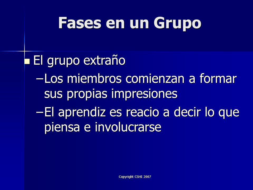 Copyright CSHI 2007 Formal Formal Informal Informal Psicológico Psicológico Tipos de Grupos