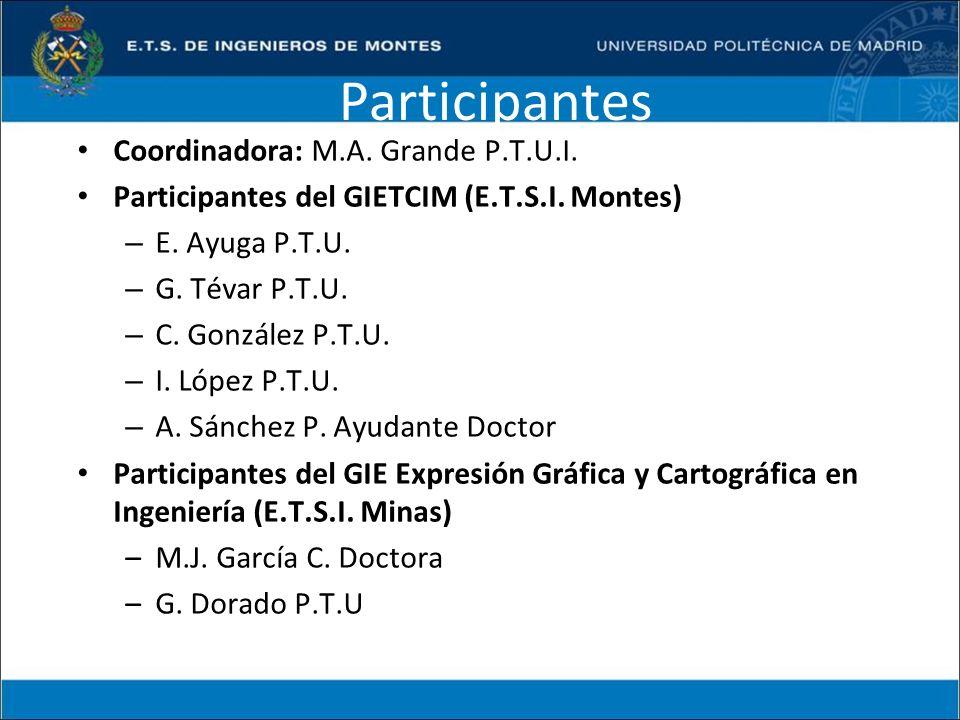 Participantes Coordinadora: M.A. Grande P.T.U.I. Participantes del GIETCIM (E.T.S.I. Montes) – E. Ayuga P.T.U. – G. Tévar P.T.U. – C. González P.T.U.