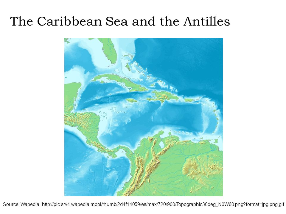 Source: Wapedia. http://pic.srv4.wapedia.mobi/thumb/2d4f14059/es/max/720/900/Topographic30deg_N0W60.png?format=jpg,png,gif The Caribbean Sea and the A