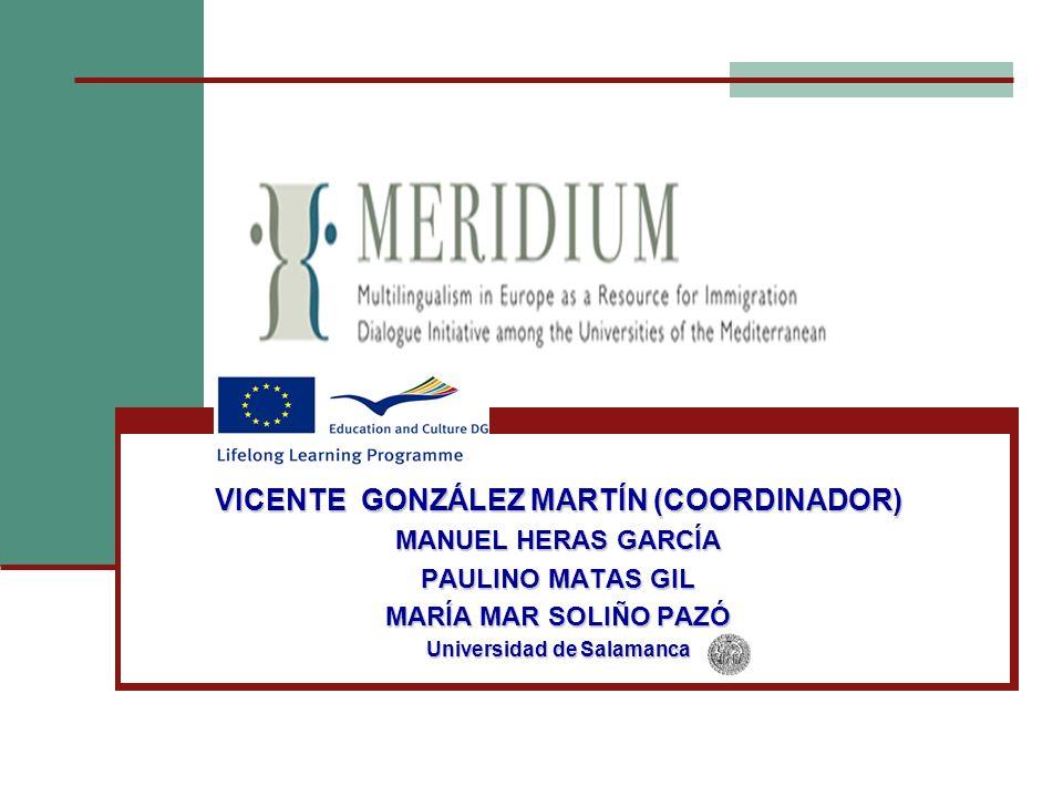 VICENTE GONZÁLEZ MARTÍN (COORDINADOR) MANUEL HERAS GARCÍA PAULINO MATAS GIL MARÍA MAR SOLIÑO PAZÓ Universidad de Salamanca