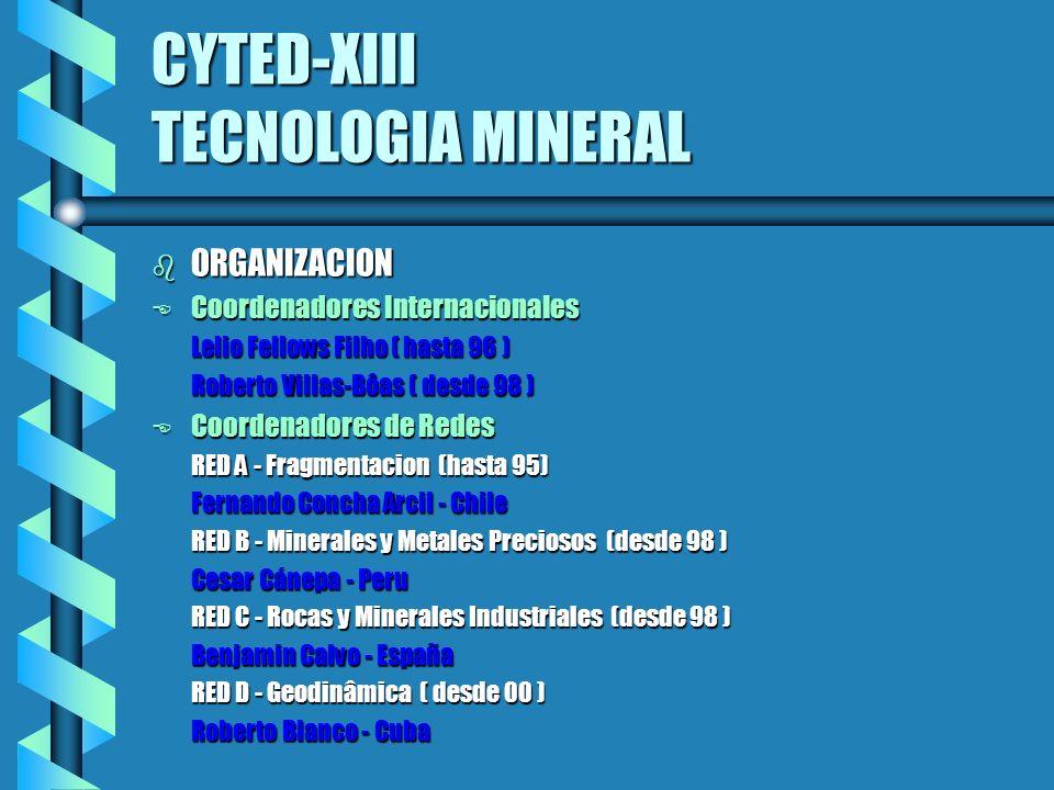 CYTED-XIII TECNOLOGIA MINERAL b ORGANIZACION E Coordenadores Internacionales Lelio Fellows Filho ( hasta 96 ) Lelio Fellows Filho ( hasta 96 ) Roberto Villas-Bôas ( desde 98 ) Roberto Villas-Bôas ( desde 98 ) E Coordenadores de Redes RED A - Fragmentacion (hasta 95) RED A - Fragmentacion (hasta 95) Fernando Concha Arcil - Chile Fernando Concha Arcil - Chile RED B - Minerales y Metales Preciosos (desde 98 ) RED B - Minerales y Metales Preciosos (desde 98 ) Cesar Cánepa - Peru Cesar Cánepa - Peru RED C - Rocas y Minerales Industriales (desde 98 ) RED C - Rocas y Minerales Industriales (desde 98 ) Benjamin Calvo - España Benjamin Calvo - España RED D - Geodinâmica ( desde 00 ) RED D - Geodinâmica ( desde 00 ) Roberto Blanco - Cuba Roberto Blanco - Cuba