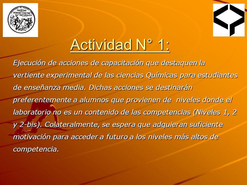 Actividad N° 1: Ejecución de acciones de capacitación que destaquen la vertiente experimental de las ciencias Químicas para estudiantes de enseñanza m