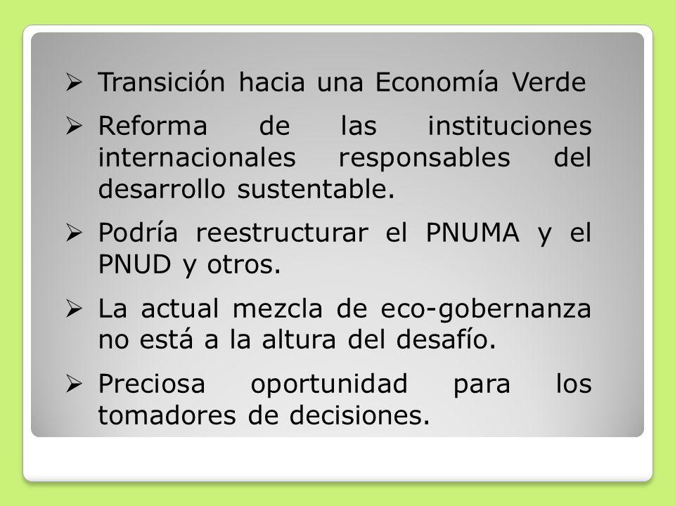 Transición hacia una Economía Verde Reforma de las instituciones internacionales responsables del desarrollo sustentable. Podría reestructurar el PNUM