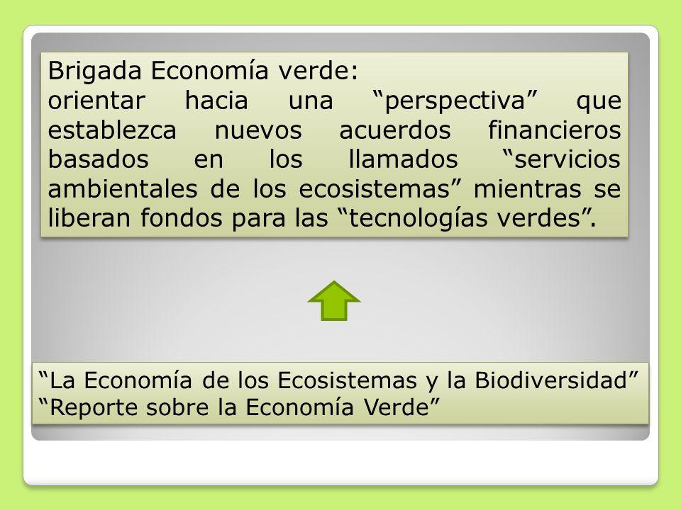 Brigada Economía verde: orientar hacia una perspectiva que establezca nuevos acuerdos financieros basados en los llamados servicios ambientales de los