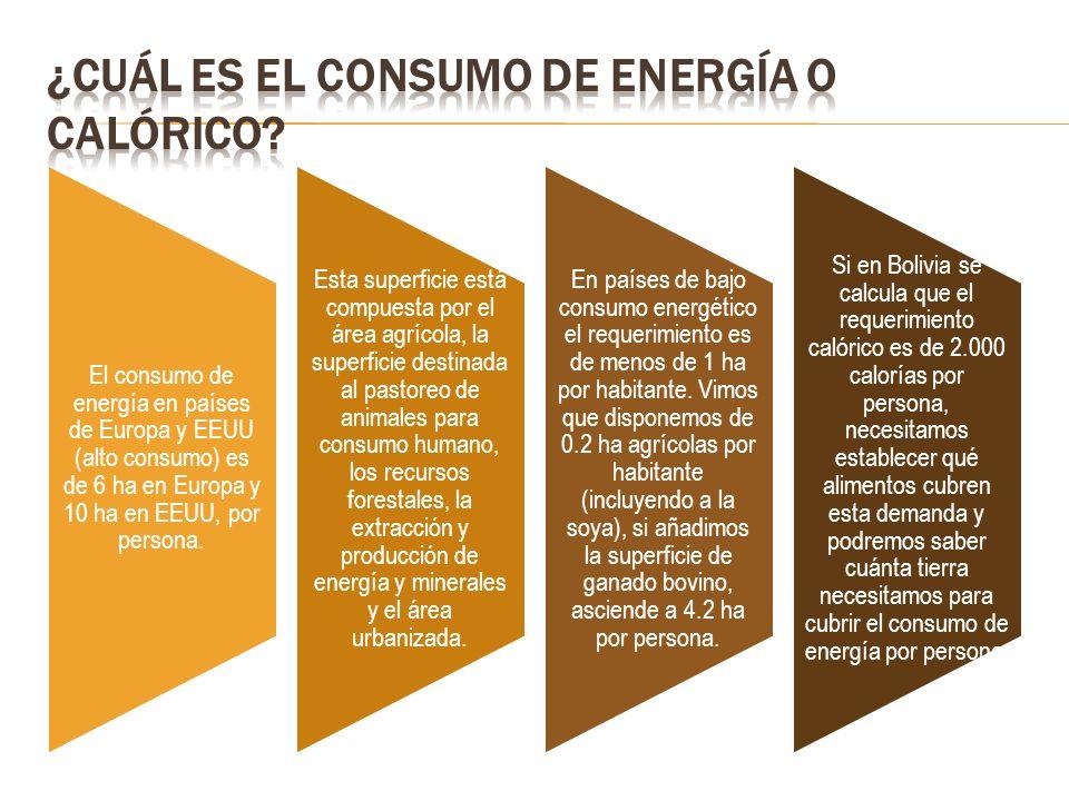 El consumo de energía en países de Europa y EEUU (alto consumo) es de 6 ha en Europa y 10 ha en EEUU, por persona. Esta superficie está compuesta por