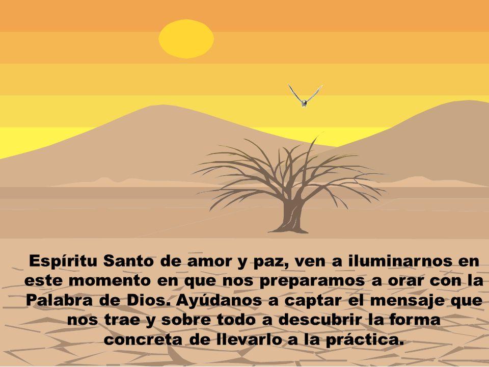 Espíritu Santo de amor y paz, ven a iluminarnos en este momento en que nos preparamos a orar con la Palabra de Dios. Ayúdanos a captar el mensaje que