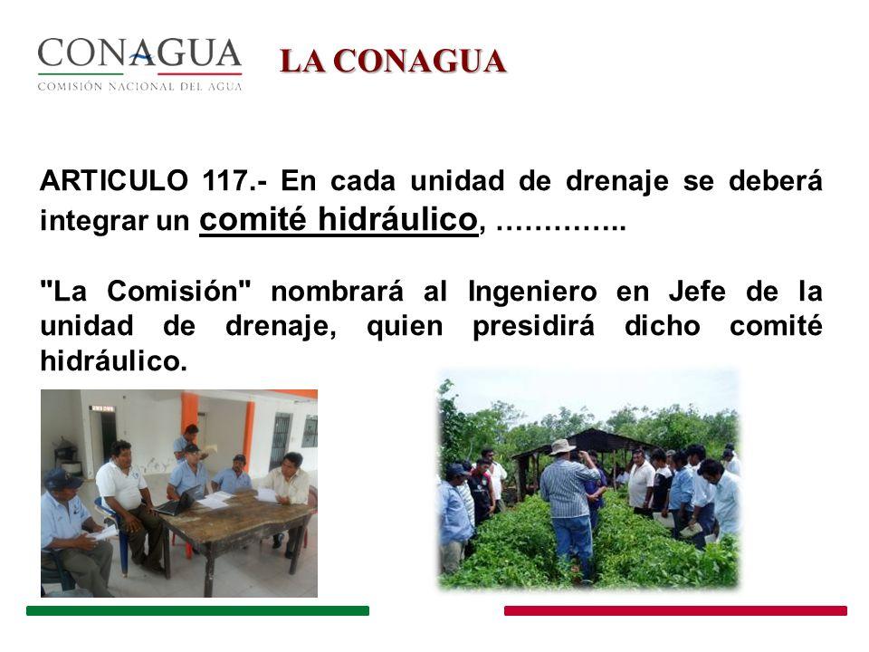 EL COMITÉ HIDRÁULICO 1.Un Presidente, que será el Ingeniero en Jefe del distrito, designado por La Comisión , y II.