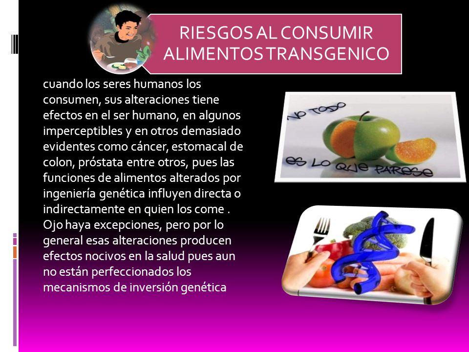 RIESGOS AL CONSUMIR ALIMENTOS TRANSGENICO cuando los seres humanos los consumen, sus alteraciones tiene efectos en el ser humano, en algunos impercept