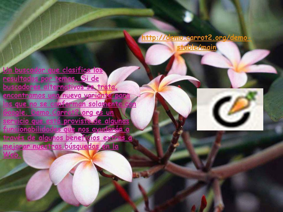 http://www.chacha.com/ Es un buscador que combina resultados provenientes de un algoritmo con otros sugeridos por seres humanos, contratados por Chach