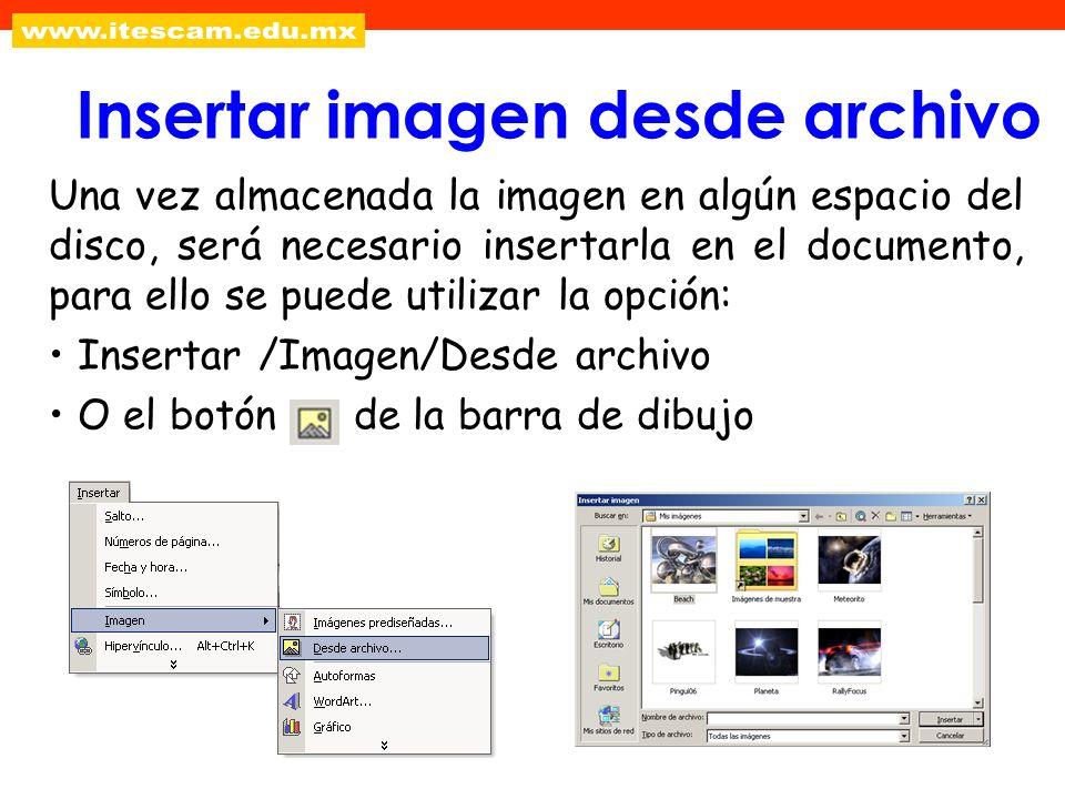Una vez almacenada la imagen en algún espacio del disco, será necesario insertarla en el documento, para ello se puede utilizar la opción: Insertar /I