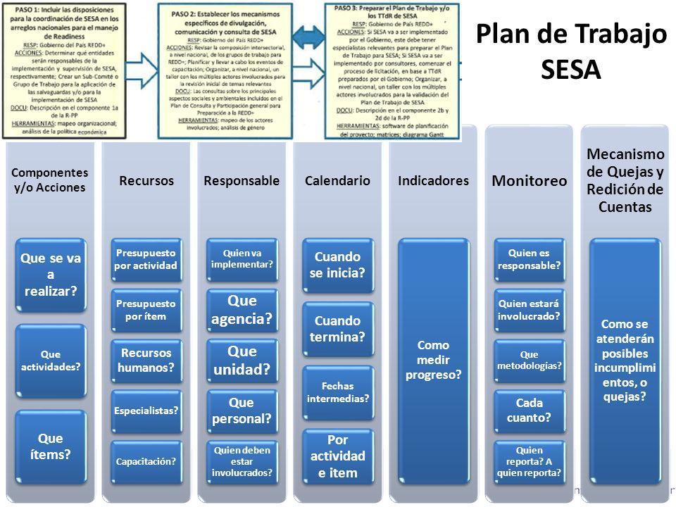 Plan de Trabajo SESA Componentes y/o Acciones Que se va a realizar.