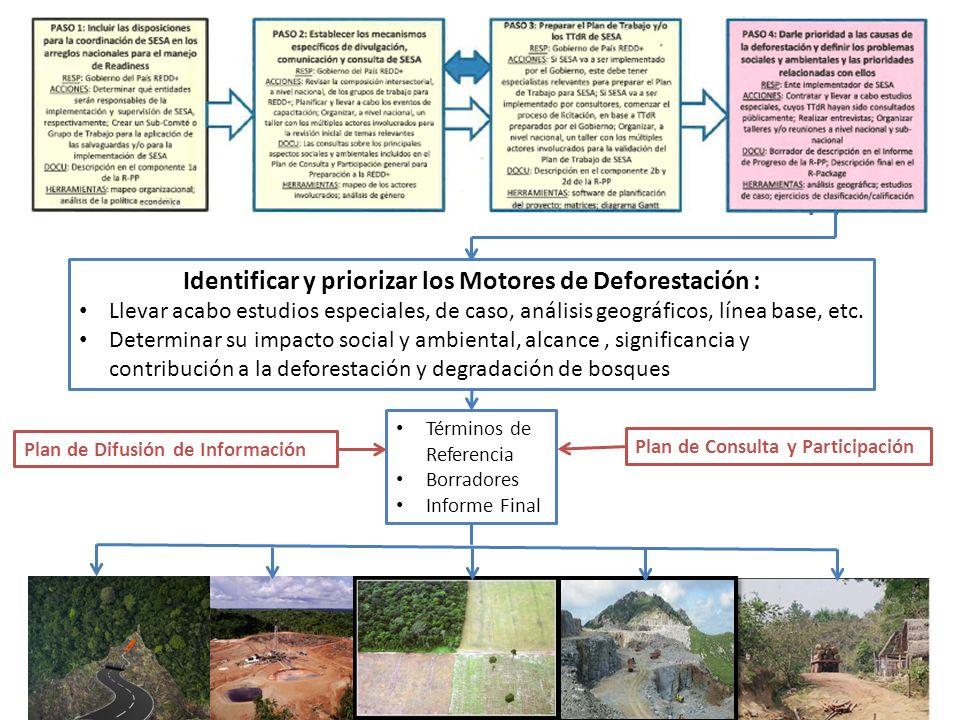 Identificar y priorizar los Motores de Deforestación : Llevar acabo estudios especiales, de caso, análisis geográficos, línea base, etc.