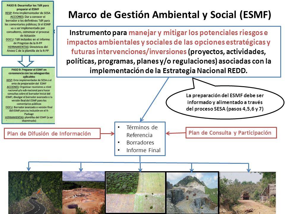 Instrumento para manejar y mitigar los potenciales riesgos e impactos ambientales y sociales de las opciones estratégicas y futuras intervenciones/inversiones (proyectos, actividades, políticas, programas, planes y/o regulaciones) asociadas con la implementación de la Estrategia Nacional REDD.