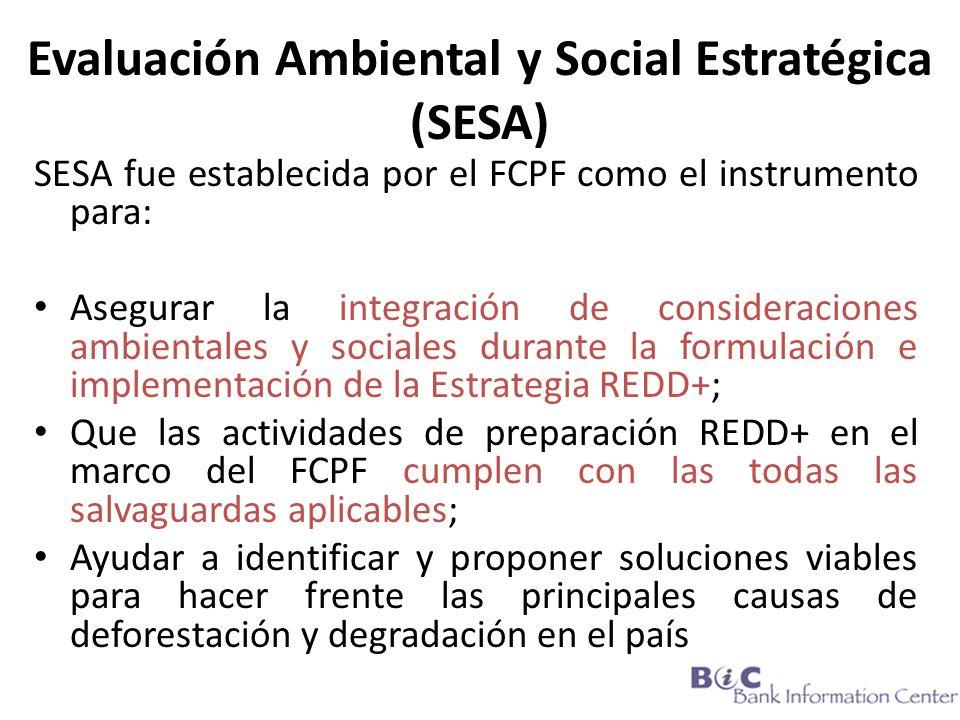 Evaluación Ambiental y Social Estratégica (SESA) SESA fue establecida por el FCPF como el instrumento para: Asegurar la integración de consideraciones ambientales y sociales durante la formulación e implementación de la Estrategia REDD+; Que las actividades de preparación REDD+ en el marco del FCPF cumplen con las todas las salvaguardas aplicables; Ayudar a identificar y proponer soluciones viables para hacer frente las principales causas de deforestación y degradación en el país