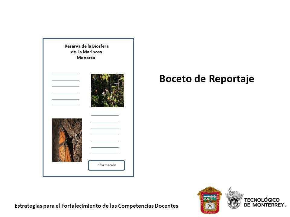 Estrategias para el Fortalecimiento de las Competencias Docentes Reserva de la Biosfera de la Mariposa Monarca Información Boceto de Reportaje