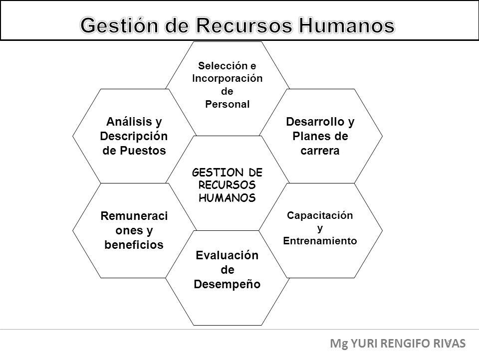 Selección e Incorporación de Personal Desarrollo y Planes de carrera Análisis y Descripción de Puestos GESTION DE RECURSOS HUMANOS Remuneraci ones y b